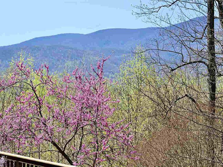 cotw around around, round top mountain view from deck