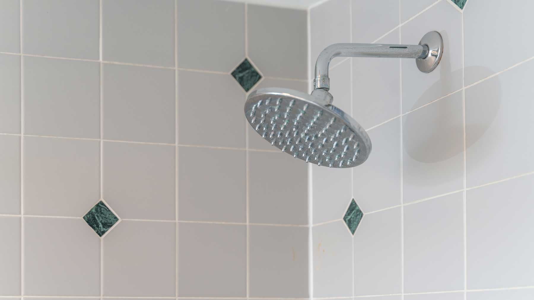 Riverfront retreat master bath shower head