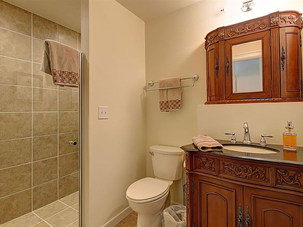 bath with walk in shower and cabinet vanity