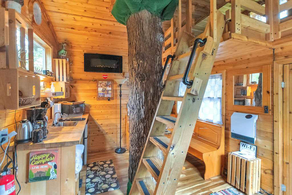 treehouse kitchen with central tree trunk