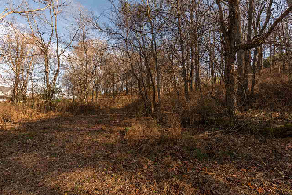Mckamy Springs 28 acres partially wooded